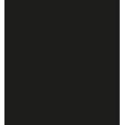 Charles-Stone-NY-logo-web2